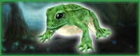 (MB) True Tree Frog