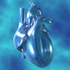 Enia's Heart (30 Days)